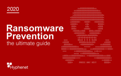 How to Protect your Business from Ransomware 2020 Ultimate Guide